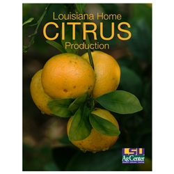 Louisiana Home Citrus Production