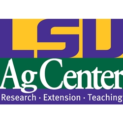 2019 Morehouse LSU AgCenter Private Pesticide Applicators Re-certification